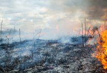 Incendio en la zona de Aubagne.