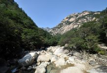Monte Kumgang_Corea del Norte_Biosfera