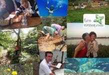 Su objetivo es promover un modelo de turismo sostenible y fomentar un tipo de modelo turístico alternativo