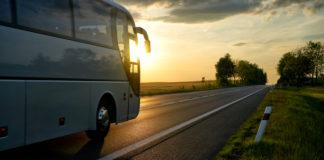 Los cuatro grupos propondrán en conjunto 12.000 trayectos en autocar.