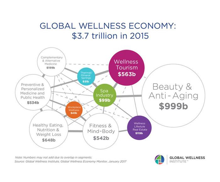 globalwellnesseconomy2016_v3FINAL