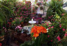 Imagen de un patio lleno de flores y con una fuente en Córdoba.