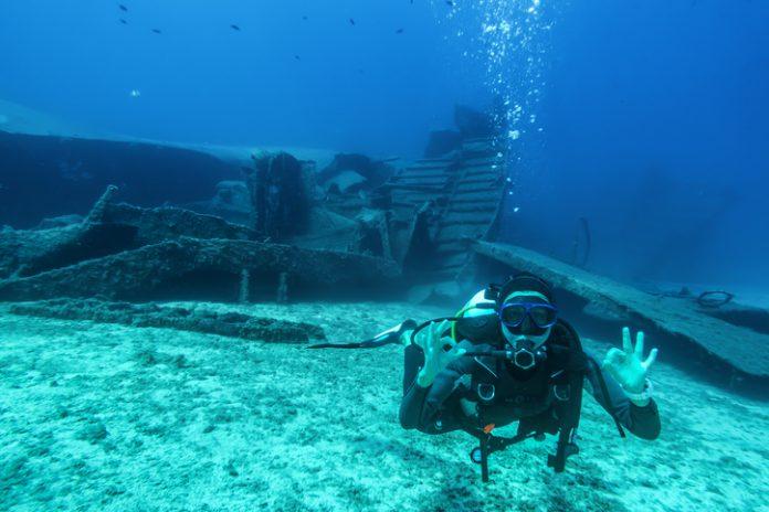 Tras unos años bajo las aguas, estas estructuras se convierten en verdaderos arrecifes artificiales llenos de vida, pues la biodiversidad los adopta como hogar y se desarrolla de forma increíble.