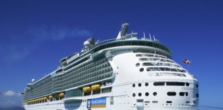 Overall, Royal Caribbean said it expects to raise total capacity by 8.6 percent in 2019