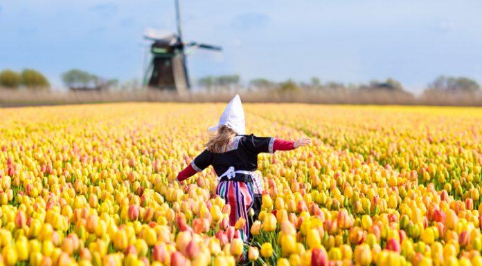 7-razones-para-viajar-a-Holanda-en-2019
