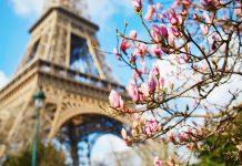 Torre Eiffel 130 aniversario