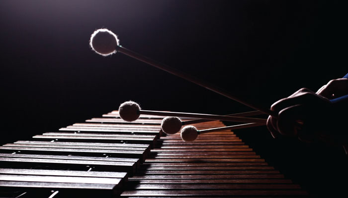 festivales-mexicanos-musica-marimba